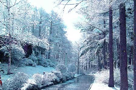 八ヶ岳・富士見高原の宿/ビラフロムナウクラブの冬